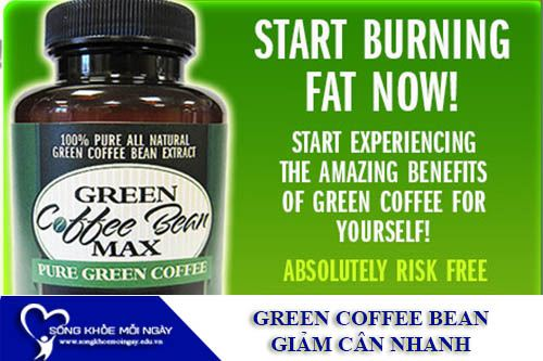 Green Coffee Bean -1