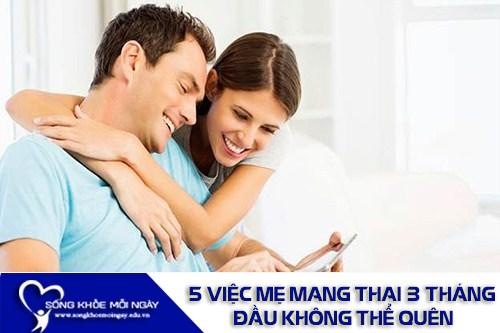 5 Việc Mẹ Mang Thai 3 Tháng Đầu Không Thể Quên