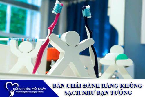 Bàn Chải Đánh Răng Không Sạch Như Bạn Tưởng