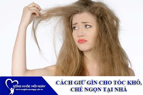 Cách giữ cho tóc không bị khô và chẻ ngọn đơn giản