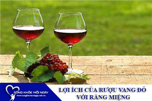 Lợi Ích Của Rượu Vang Đỏ Với Răng Miệng